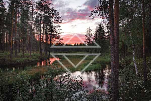 Sunset Bog