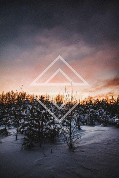 Trees at Winter Twilight