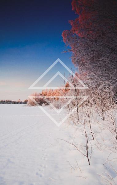 Crimson Hues Along a Frozen Lake